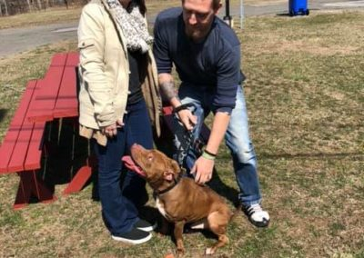"""""""Cash"""" adopted by JD and Ashley, courtesy of Manchester Animal Control."""